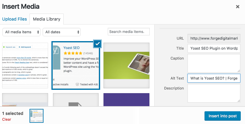 Yoast SEO | How to add an Alt Tag to your WordPress images | Forge Digital Marketing